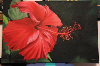 Hibiscus #2, , Jennifer R. Chan