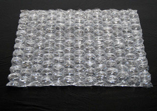 Bubble Wrap, Jonah Susskind