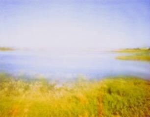 Slough Ponds, Erin Malone