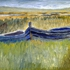 Cb_-_two_boats__in_grass__the_cashen__2005__7_x_10__wood___50_