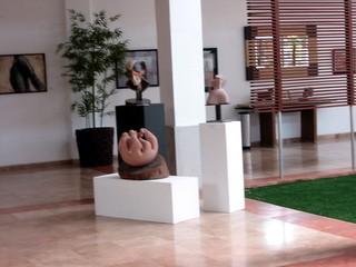, VÍNDICA Gallery-Qro.