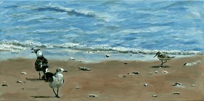 20111101162153-birdsonthebeachii95