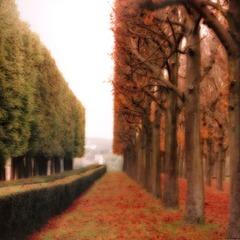 Parc de Sceaux France, Lynn Geesaman