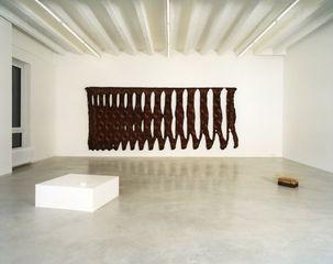installation view, Ariel Schlesinger