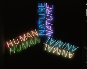 , Bruce Nauman