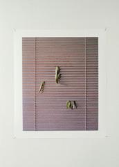 Untitled, Sara Bjarland