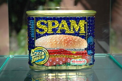 20111117075812-wham-bam-thank-you-spam1