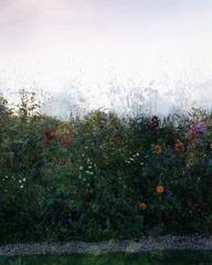 Green Pathway, Sally Apfelbaum