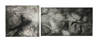 Bird Strike, Sarah Sears