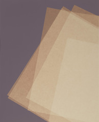 Five Sheets of Thin Paper, Phil Chang