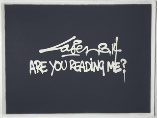 Are You Reading Me?, Laser 3.14