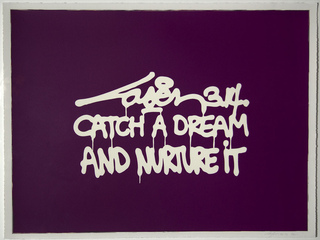 Catch A Dream And Nurture It, Laser 3.14