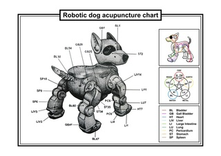 Robotic dog acupuncture chart, France Cadet