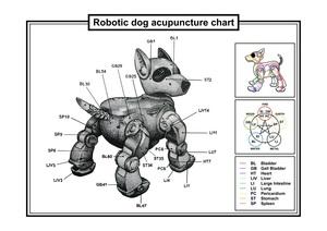 20111129234551-dog_acupuncture_08