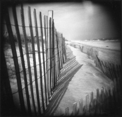Hurricane Fence,Meg Madison