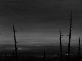 Sky Forest, Todd Carpenter