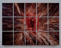 Mat_collishaw_bullethole