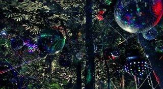 Jungle time 2  , Cheng Ran