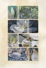Notebook Magnolias, Cidne Hart