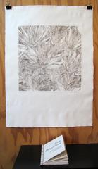 Aloe Breviflora: Printmaking Portfolio, Cidne Hart