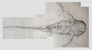 20111211110557-04eins_paint_splash_horseshoe_crab