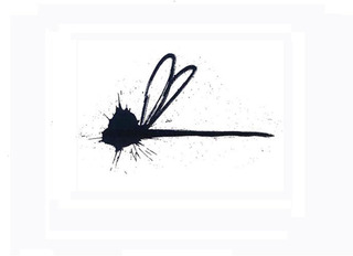 DRAGONFLY ,Stefan Eins