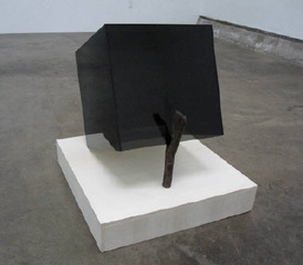 Animal Trap, Whitney Lynn