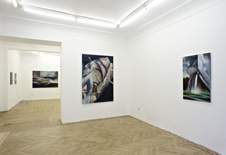 Everybody is a lake, Installation View at BISCHOFF/WEISS, Louise Thomas