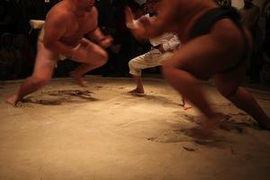 20111218160417-sumo_action_