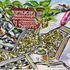 20111223153003-gardenrhythms