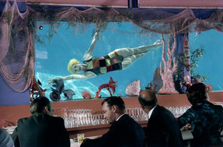Entertainment at the Bar, Lawrence Schiller
