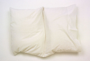 20120102231158-leor-grady-untitled-pillow
