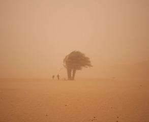 Sandstorm, Greg Maka