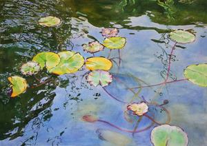 20120108163041-pond_patterns