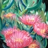 20120115105635-2010_essbare_mittagsblume_pastell_1300x1677p_33x44_cm