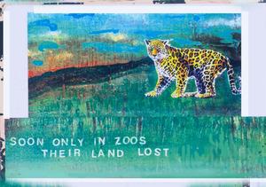 20120121201213-ans_eco_awareness