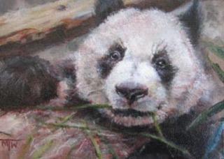 Panda, Margaret Tcheng Ware