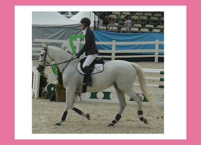 20120123205645-horse___rider_9a_rt