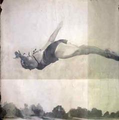 swimming fields, Jane Hambleton
