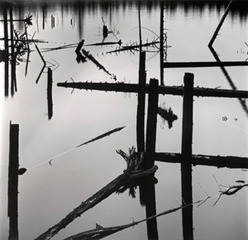 Water Reflection, Logging, Alaska, Brett Weston