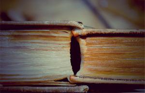 20120130231418-book10a