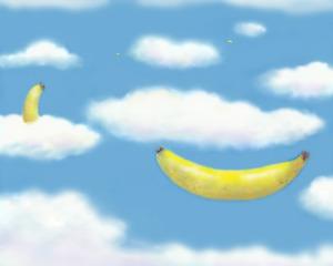 20120201021832-flg_banan09_8x10res300