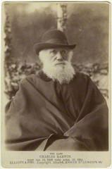 Charles Darwin by Elliott & Fry  ,