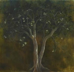 20120205192455-orange_jasmine_tree_in_twilight__84_x_90