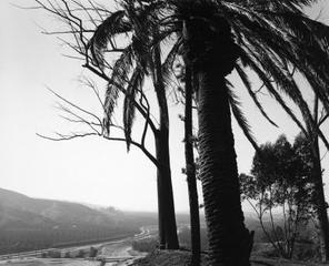 Edge of San Timoteo Canyon, looking toward Los Angeles, Redlands, California,Robert Adams