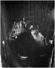 Vagina/Vase (Imprint), Talia Chetrit