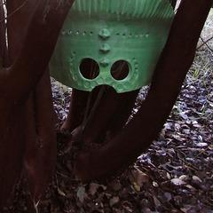 Lantern, Rebecca Guarda
