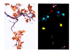 20120222202922-creative_differences_diptych