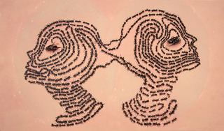 Pheromones, Aubrey Learner