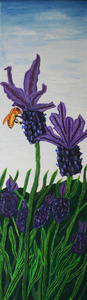 20120229230543-morning-lavender16x56